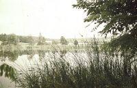 Rybník Pazderna 2