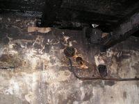 Požár domu Trnávka #10